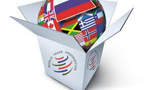 MBA-курсы.ВТО .Изменения в российской экономике