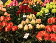 цветочный магазни на колесах